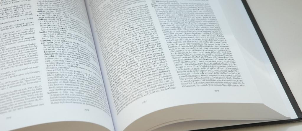 medium_norsk-ordbok